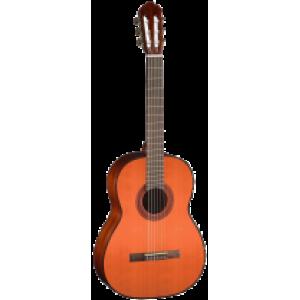 AC100DX YT Bag классическая гитара Deluxe c чехлом